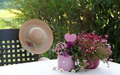 Muttertag Blumen Garten